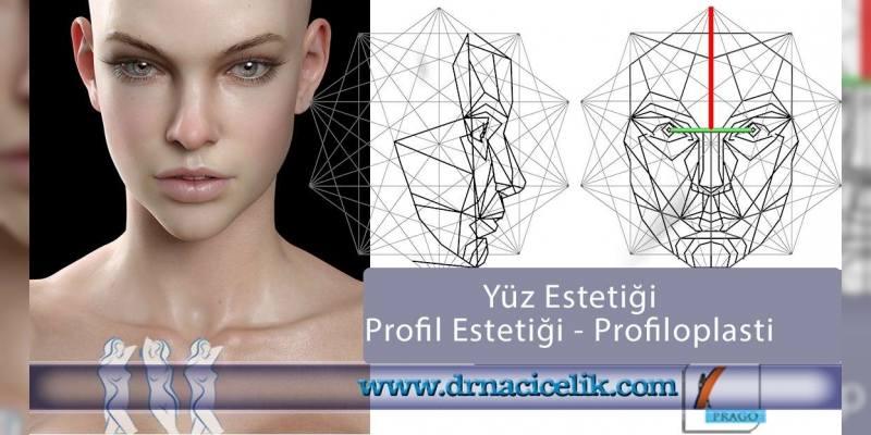 profil estetiği